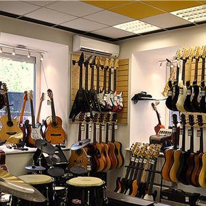 Музыкальные магазины Елани
