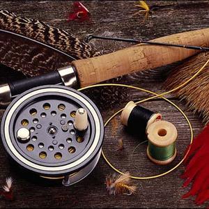 Охотничьи и рыболовные магазины Елани