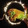 Цирки в Елани